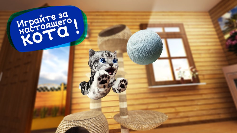 Game for Cat for Android Free Download - 9Apps