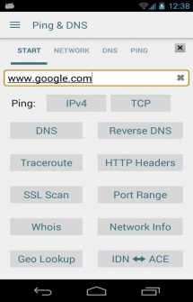 Ping and DNS