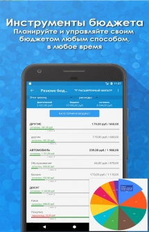 Bluecoins: Finance And Budget на Андроид